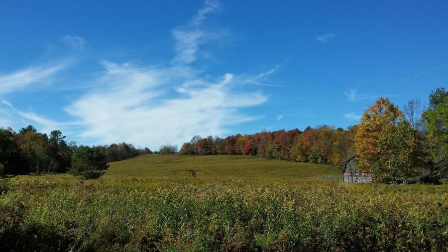 Field_Farm_Catskills