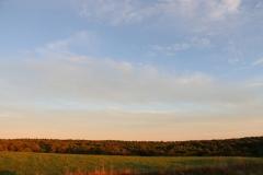 Fall_Treeline_Sky