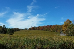 Field_Farm_Catskills