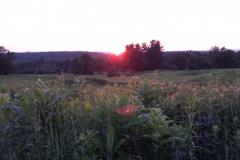 Sunset-at-Silo_2