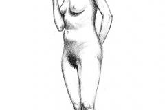 Jeffrey-Wiener_Standing-Female-pairshaped