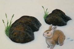 Jeffrey-Wiener_Tracks-in-Time_Rabbit