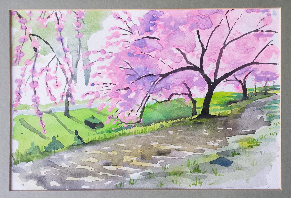 Cherry-Blossoms_Central-Park